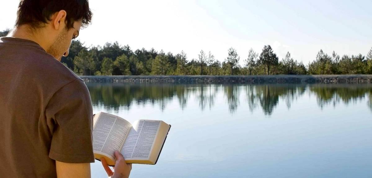 Послание к Римлянам: толкование письма Апостола Павла. Г. Фергюсон