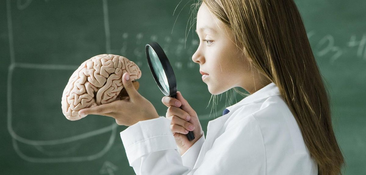 Особенности развития мозга в подростковом возрасте. МР3