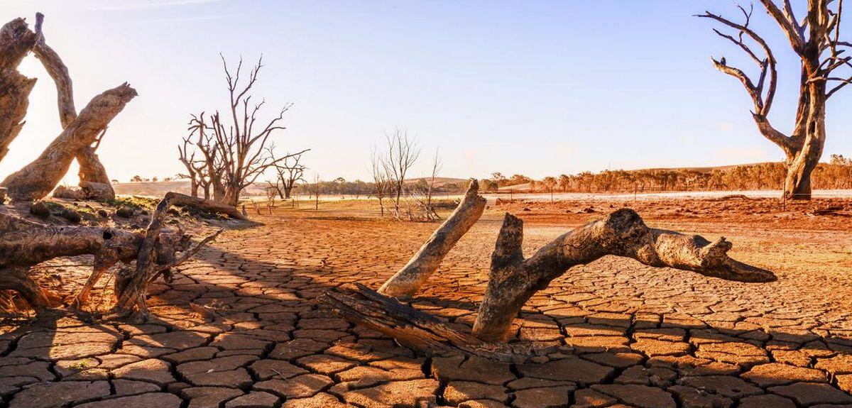 Духовный голод и его последствия. Христианский семинар в 4-х частях