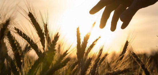 День седьмой суббота - что говорит Библия об этом?