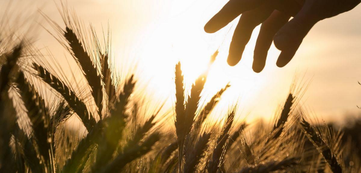 Почему в Библии седьмой день - суббота, как это объяснить?