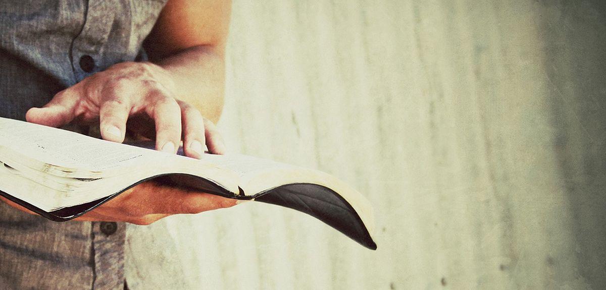 Эстетика Библии, или красота и грация библейских текстов