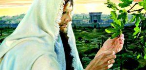 Как Иисус проклял смоковницу и выгнал менял из храма?