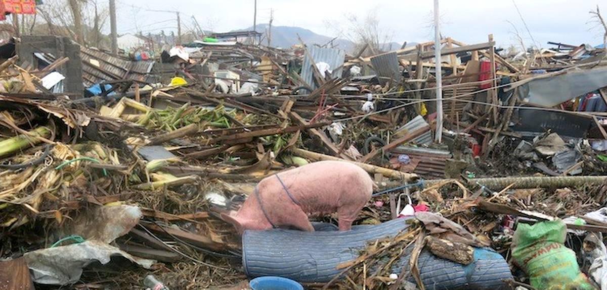 Церковь Христа в Абиджане помогает пострадавшим на Филиппинах