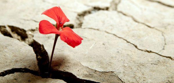 Отлучение от церкви и возвращение в церковь. Вопрос-ответ