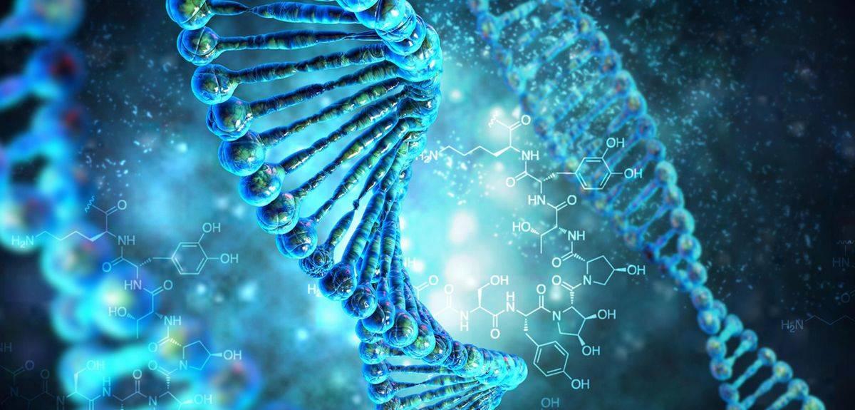 Все ли формы жизни на земле содержат ДНК?