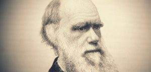 Библия и эволюция: противоречит ли теория Божьей модели?