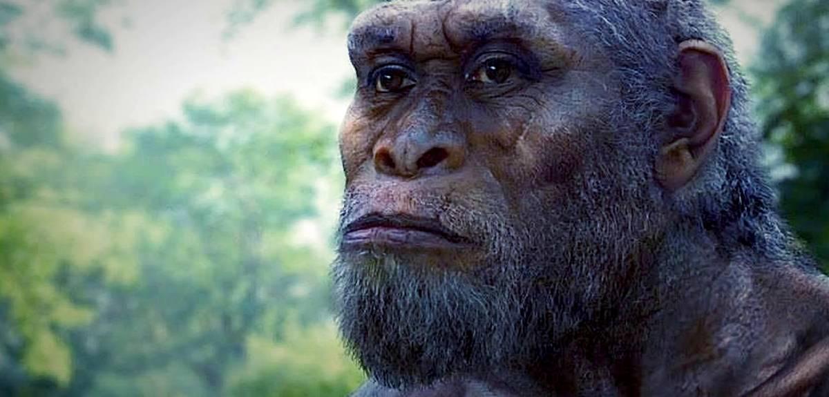 Христианство и теория эволюции: 4 взгляда на происхождение жизни