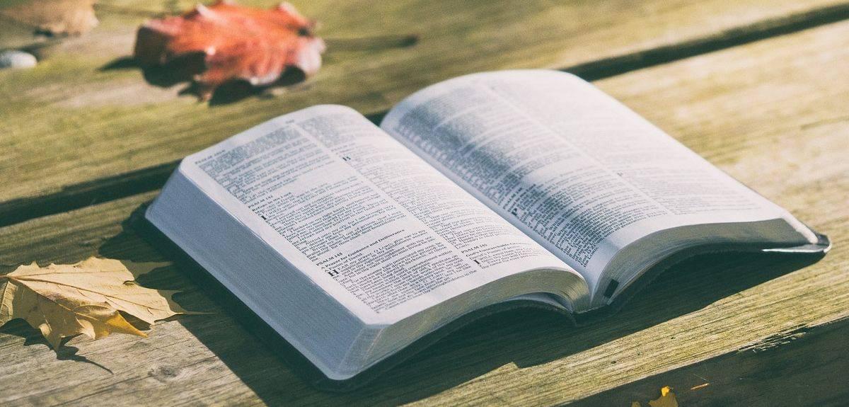 Чувства человека и правильное толкование Библии