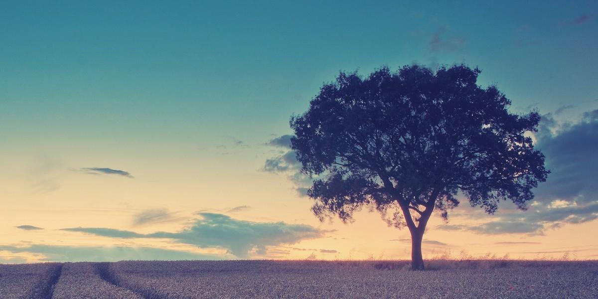 Где находится Эдемский сад (райский) на земле и на карте?