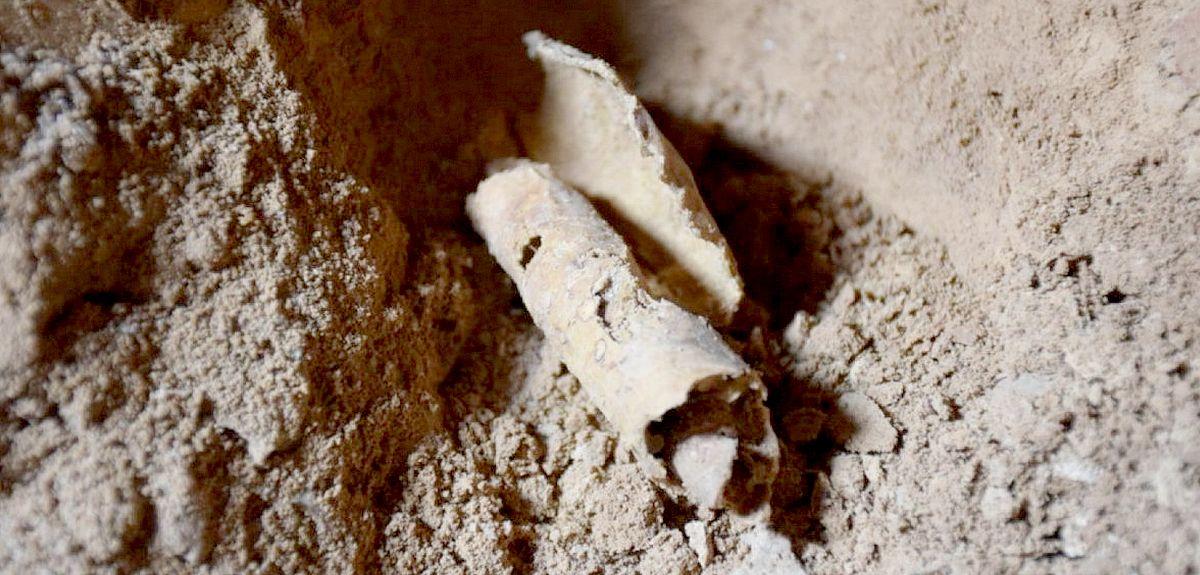 Найдена 12-я пещера, где хранились Свитки Мертвого моря