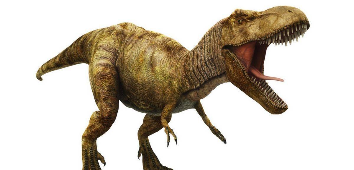 Почему вымерли динозавры - что говорит Библия?