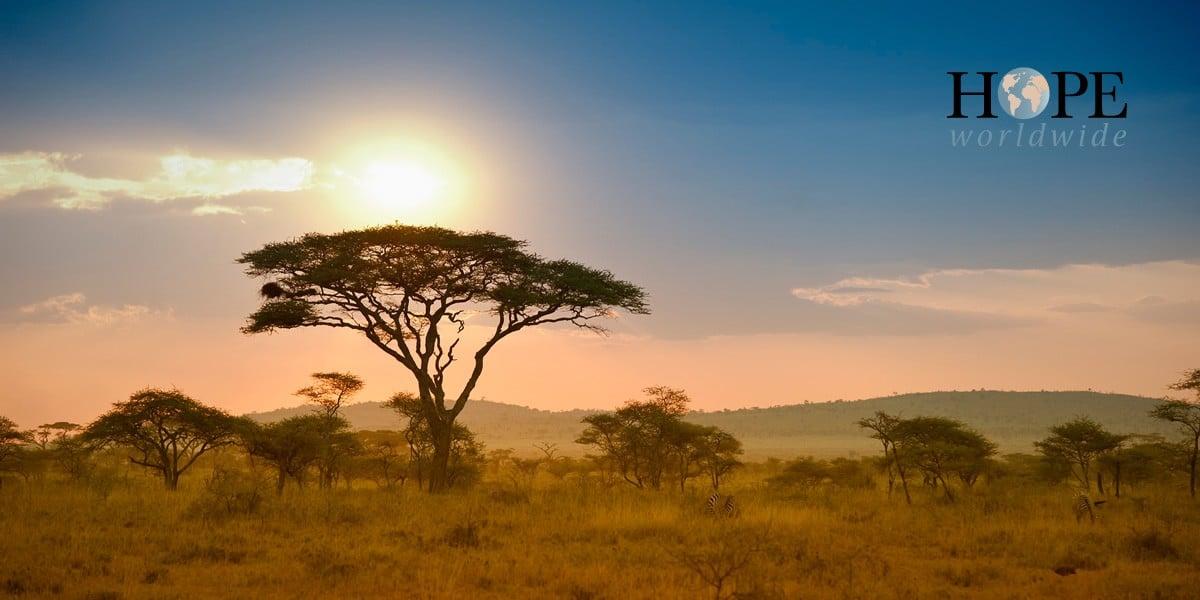 Благотворительность в Африке: личный опыт одного волонтера