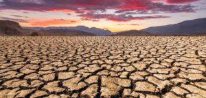 Библия и экология: насколько важны вопросы изменения климата?