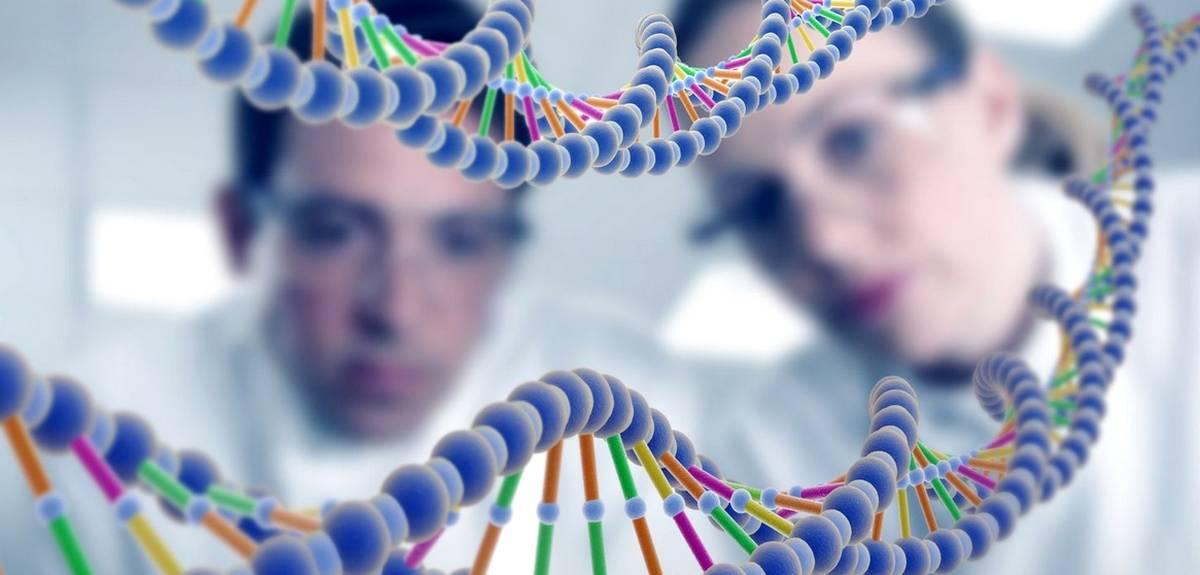 ДНК человека и его окружение предопределяют его поступки?