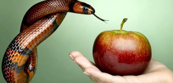 Что такое первородный грех: ложная доктрина и учение Библии