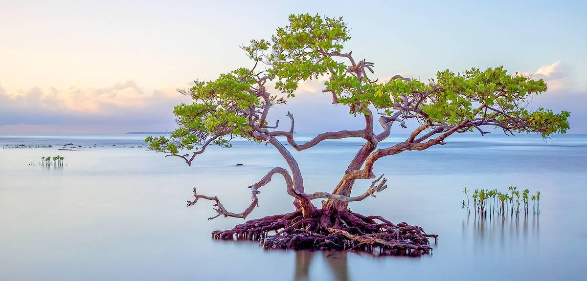 Истинное блаженство: Царство Небесное и две реальности
